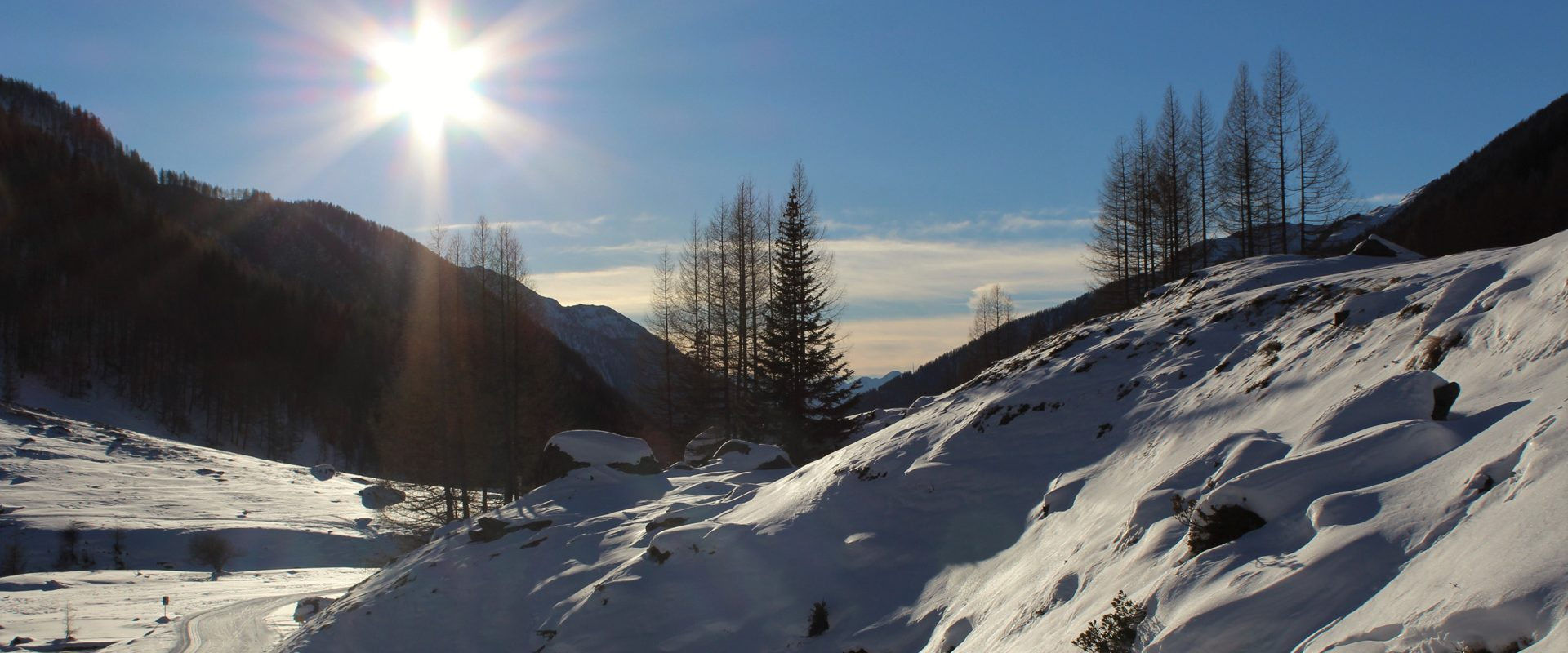 Winter_Wasserer